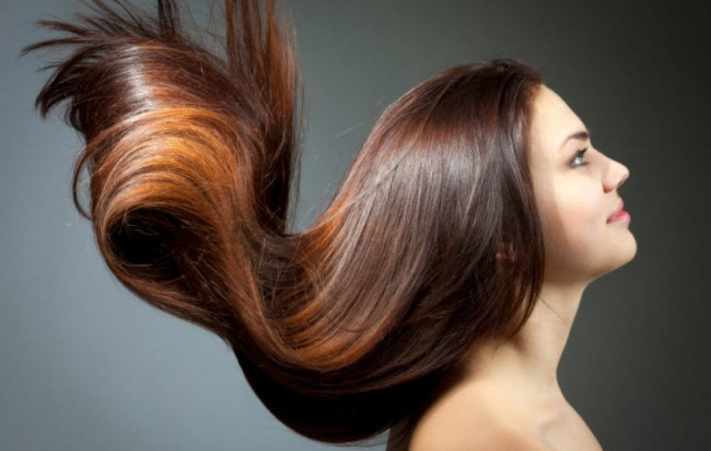 Ayurvedic Hair Care Top 4 Remedies for Thick Hair Growth